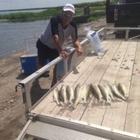 Kevin smith mikes lake limit 7-20-16