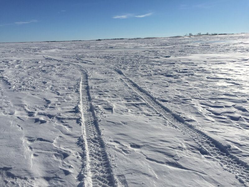 Wednesday weekly ice conditions report 8 devils lake for Devils lake fishing report