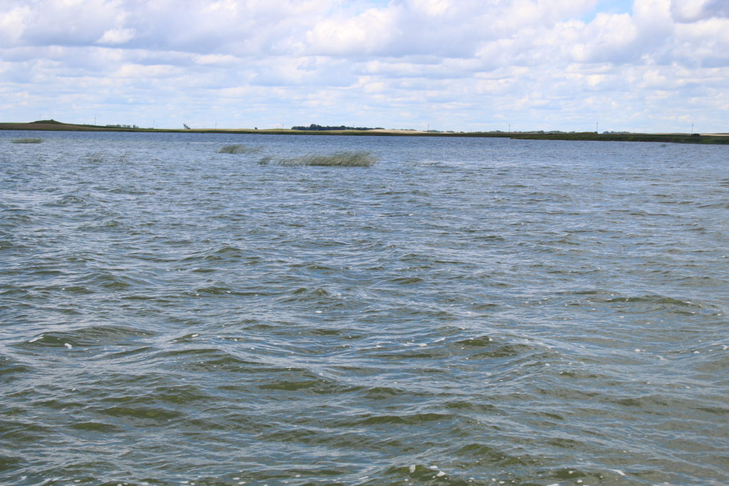 Tuesday summer water conditions report 4 devils lake for Devils lake fishing report